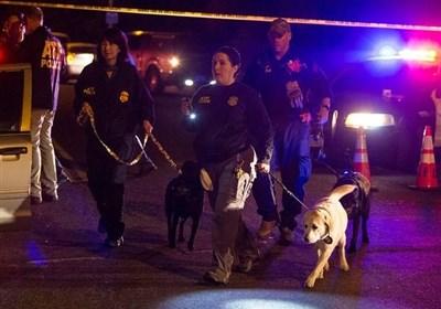 انفجار تگزاس موجب زخمی شدن 2 نفر شد