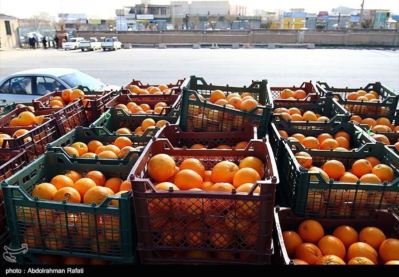 532 تن سیب و پرتقال شب عید مردم استان بوشهر تامین شد