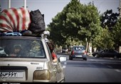 چادرخوابی بلای جان طبیعت مازندران/وقتی شمال ایران زیرساخت گردشگری ندارد