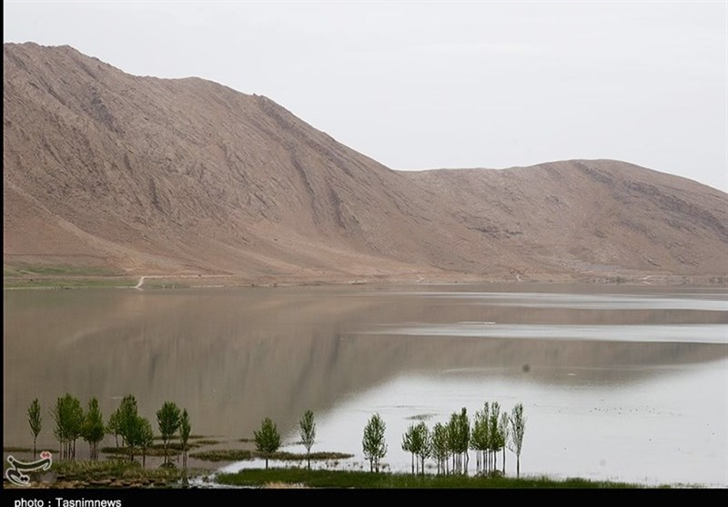 Choghakhor Lagoon: An International, Beautiful Wetland in Iran