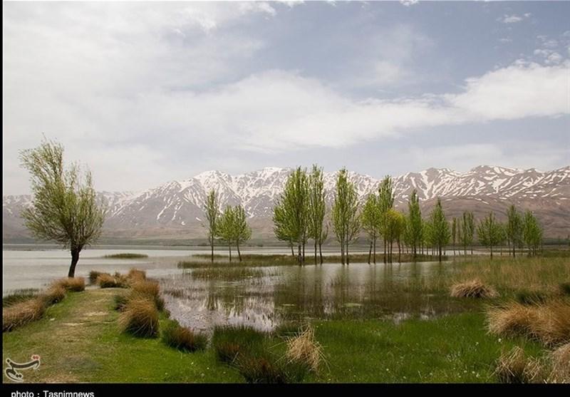 Choghakhor Lagoon: An International, Beautiful Wetland in Iran - Tourism news