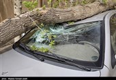 هواشناسی ایران 1400/05/17| هشدار تندباد و آبگرفتگی معابر در 13 استان