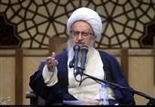 آیت الله مکارم شیرازی: بسیجیان در زمینه رفع مشکلات اقتصادی و فرهنگی اهتمام داشته باشند