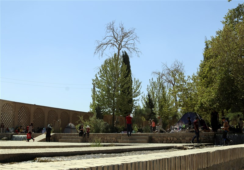 Shazdeh Garden: A Green Oasis Lying in the Heart of Desert