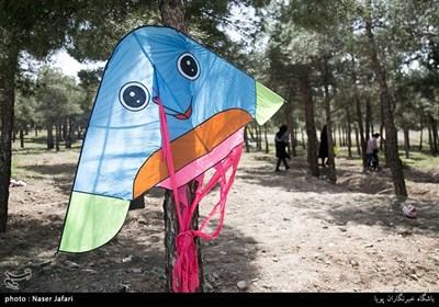 People in Iran Celebrate Nature Day