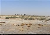 زاهدان| رفع تصرف اراضی منابع طبیعی به ارزش 11 میلیارد ریال در زاهدان