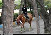 کیانمهر: مشکل قرنطینه اسبهای ایرانی هنوز حل نشده است