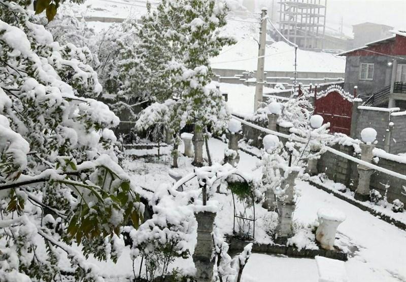مازندران| برف بهاری کلاردشت مازندران را سفیدپوش کرد