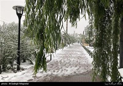 بارش برف در کرج