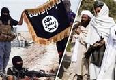 درگیری مجدد طالبان با داعش در شمال افغانستان