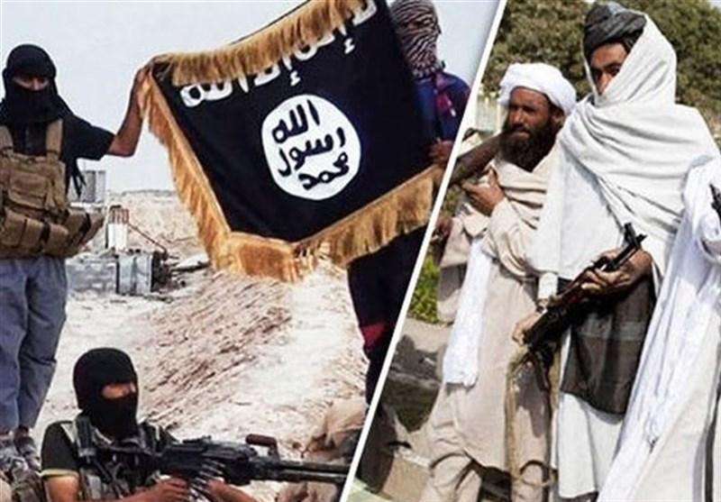 تسلیم شدن 15 داعشی به طالبان در شمال افغانستان