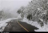 """""""بارش برف"""" در انتظار استان تهران/ ورود سامانه بارشی جدید از روز جمعه"""