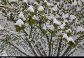 پاکستان: کہیں گرمی کہیں سردی، بالایی علاقوں کی حسین وادیوں میں برفباری