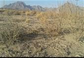 پاکستان میں محکمہ موسمیات نے خشک سالی الرٹ جاری کر دیا