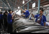 خوزستان| نظر بازاریان آبادان و خرمشهر درباره شرایط بازار بعد از لغو روادید اتباع خارجه در منطقه آزاد اروند + فیلم