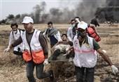 صہیونی فوج کی فلسطینی مظاہرین پر فائرنگ، 4شہید 729 زخمی + تصاویر