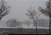 برف بهاری در 8 استان