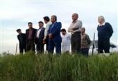 کشتارگاه آلاینده در گرگان متعهد به رفع آلایندگی سیستم فاضلاب شد