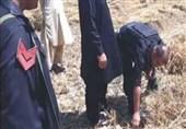 ڈی آئی خان؛ پولیس کی کارروائی میں 20 دستی بم برآمد