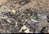 چالش زبالههای ویژه در سمنان| شهرداریها مجوزی برای دفن زبالههای صنعتی ندارند