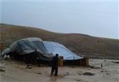 خرمآباد| سیلاب به دام و چادرهای عشایر استان لرستان خسارت زد