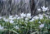 بارش های ایران به 128.6 میلیمتر رسید؛ 39 درصد کمتر از سال قبل