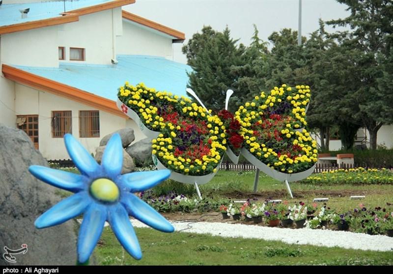 آذربایجان غربی  جشنواره گلها در دهکده ساحلی چیچست ارومیه برگزار میشود+فیلم