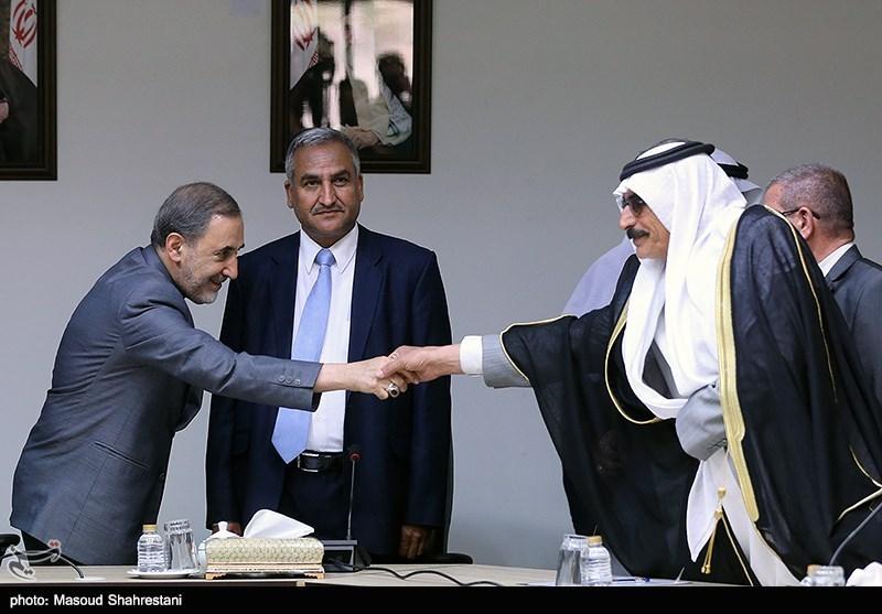 Iran's Velayati Lauds Kurds for Standing against US, Israeli Meddling in Syria