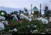 برنامههای مسجد جمکران در دهه کرامت اعلام شد