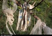 روزانه 20 تن کیسه پلاستیکی در همدان دفن میشود