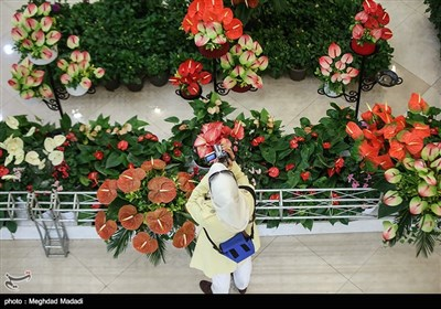 Tehran Hosts International Flower Show