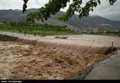 اعتبار پروژههای آبی استان کرمان تامین نشده است