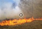 بادبادکهای آتشزا بلای جان صهیونیستها؛ ابتکار فلسطینیها چالشی دردسرساز برای اشغالگران