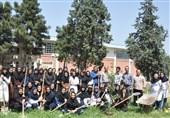 6ماه کارورزی برای دانشجویان کشاورزی الزامی شد
