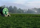 500 میلیارد تومان تسهیلات به کشاورزان کرمانشاهی پرداخت میشود