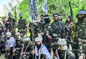 مصاحبه اختصاصی تسنیم| سخنگوی طالبان: آتشبس اتحاد طالبان را نشان داد/ دیگر گروهها در افغانستان حرفی برای گفتن ندارند