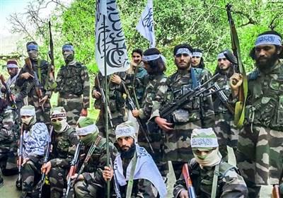مصاحبه اختصاصی تسنیم  سخنگوی طالبان: آتشبس اتحاد طالبان را نشان داد/ دیگر گروهها در افغانستان حرفی برای گفتن ندارند