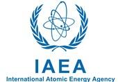 آژانس بینالمللی انرژی اتمی: تعاملات با ایران همچنان ادامه دارد