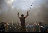 فلسطینم، صدای رنج انسانم، مرا بشنو