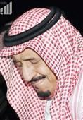 یمن میں جنگ بندی کی بین الاقوامی کوششوں کی حمایت کرتے ہیں، شاہ سلمان