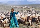 خوزستان| 54 طرح حوزه امور عشایر اندیمشک به بهره برداری میرسد