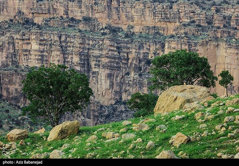 لرستان|تعطیلی مناطق گردشگری در کوهدشت؛ ورود مسافران به «شیرز» ممنوع شد