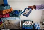 قارچخوری مدیران جهاد کشاورزی در یک نشست خبری