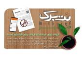 احترام بنیانگذار تخفیف گروهی ایران به محیطزیست