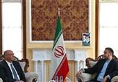 مباحثات ایرانیة مصریة تتناول التطورات الفلسطینیة والتعاون البرلمانی