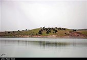 سامانه انتقال آب سد آزاد به دشتهای قروه و دهگلان به بهرهبرداری رسید
