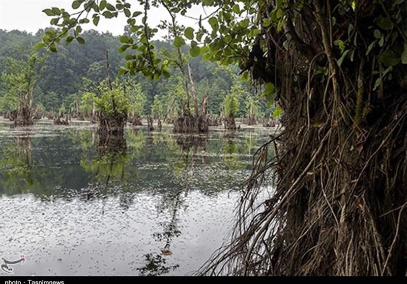 Mamarz Lake: A Ghosts Lake North of Iran