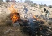 خوزستان|آتش سوزی جنگلهای بخش الوار گرمسیری اندیمشک مهار شد