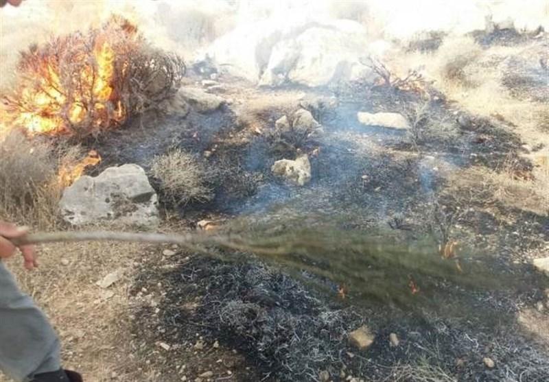 حریق در منابع طبیعی استان کرمانشاه 81 درصد کاهش یافته است