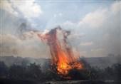 وقوع 47 مورد آتشسوزی در شهرکهای صهیونیستنشین؛ آغاز فرار صهیونیستها از مناطق همجوار غزه